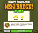 Adequate Accumulation Badge