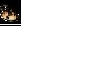 Miaulleta