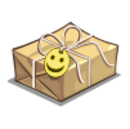 Care Package-icon.png