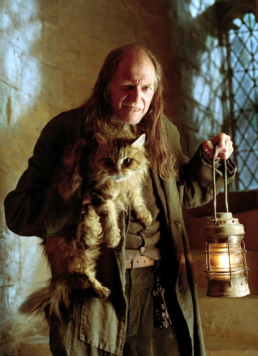 harry potter y su quinta pelicula: