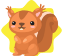 Cute Red Squirrel