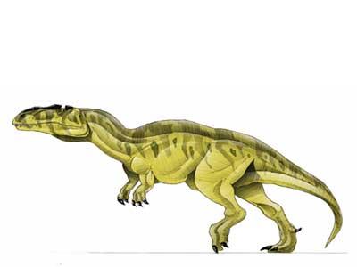 Yangchuanosaurus - Park Pedia - Jurassic Park, Dinosaurs ...