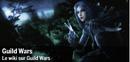 Spotlight-guildwars-255-fr.png