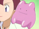 Brodie's Ditto.png
