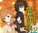 Toaru Majutsu no Index Light Novel Volume 12