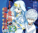Toaru Majutsu no Index Light Novel Volume 13