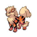 Arcanine sprite.png