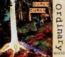 Ordinary World (bootleg)
