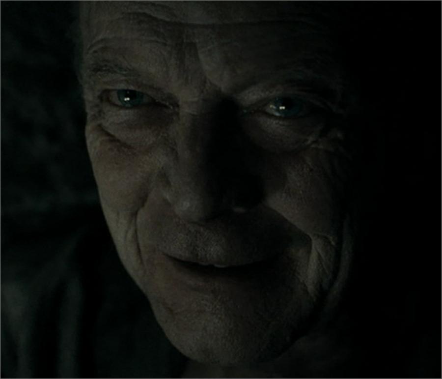 Grindelwald Potter