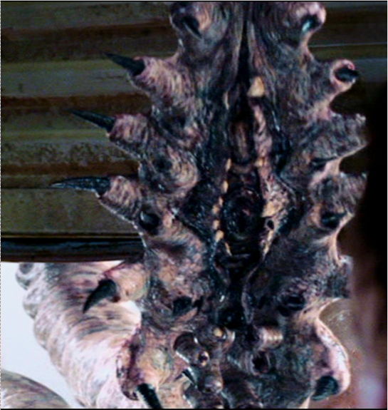 Tentacles From Planet X Stephen King S The Mist Wiki