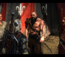The Witcher 2 quests