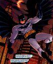 Batman 0586.jpg