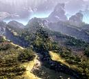 Forest ravines