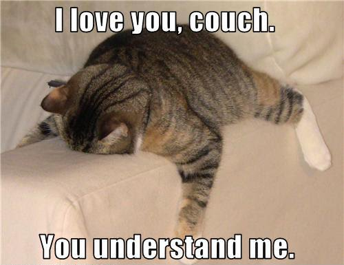 file i love you couch you understand