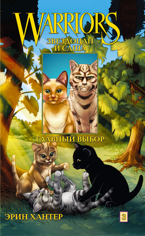 Return To The Clans Gallery Warrior Cats Wiki Erin