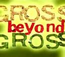 Gross and Beyond Gross