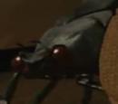 Waka Waka Bug