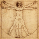 Vitruvian Man.png