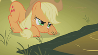 Applejack ready to jump S1E13