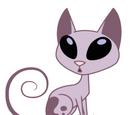 Señor Gato