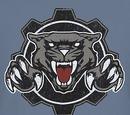 Hanover Cougars