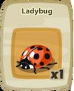 Inv Ladybug.png