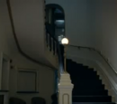 Carpenter's Knot hotel