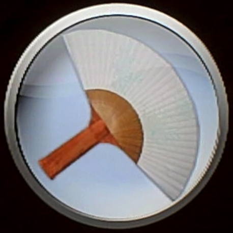 Table tennis sports champions wiki - Japanese paddle fan ...