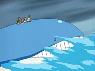 anime pokemon