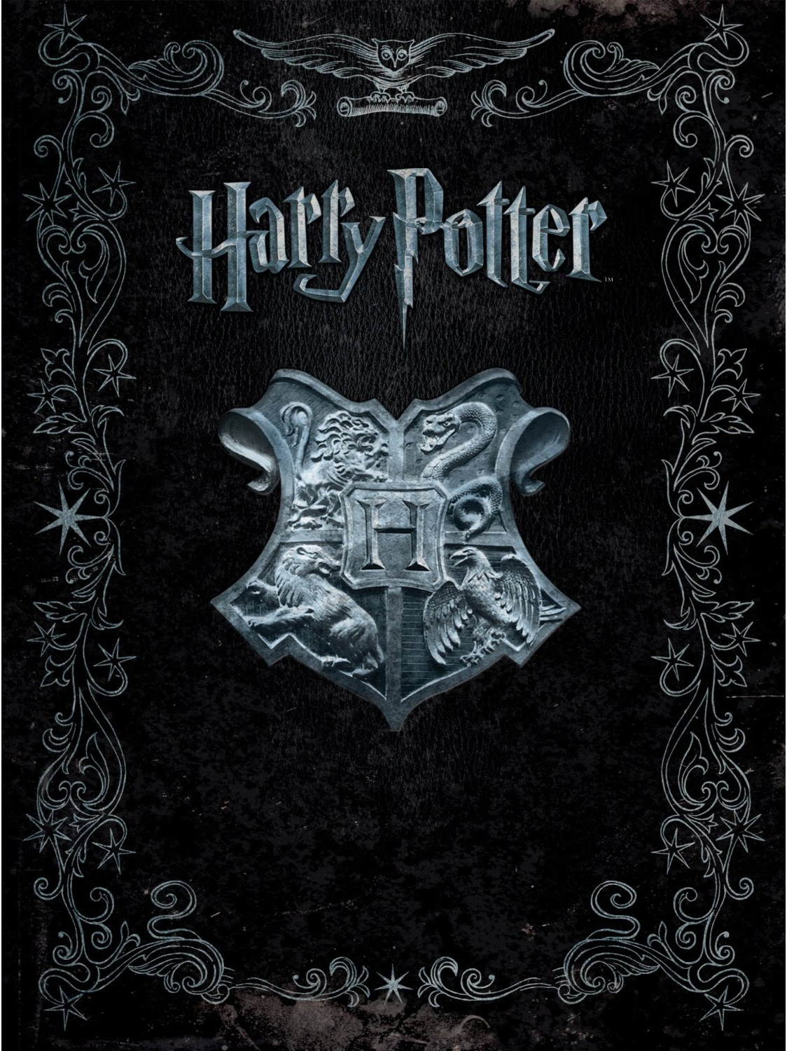 Harry Potter 1 Film
