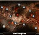 Tyrant/Breeding Pits