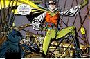 Robin Reign of Terror 001.jpg