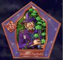 Beaumont Marjoribanks - Chocogrenouille HP2.jpg