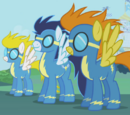 Los Wonderbolts
