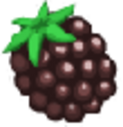 Icon Q Blackberry.png