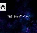 The Night Owl/Gallery
