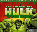 Hulk Visionaries: Peter David Vol 1 5