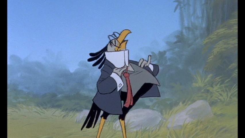 Secretary Bird Disney Wiki Wikia