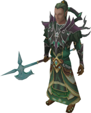 Is about the elf race for the slayer assignment see elf warrior
