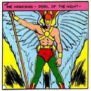 Hawkman 0038.jpg