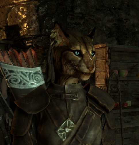 khajiit skyrim the elder - photo #31