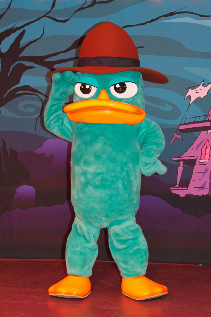 Perry The Platypus Disney Wiki