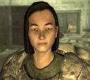 Towarzysze (Fallout 3)