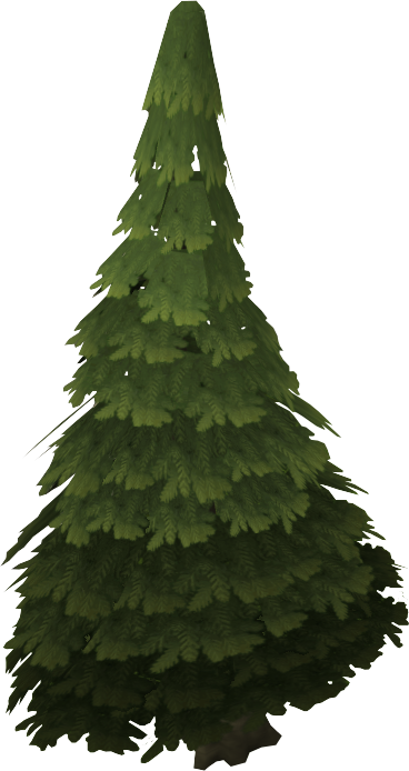Evergreen the runescape wiki for The evergreen