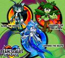 Team Scales