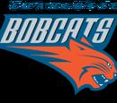 Charlotte Bobcats (2013)