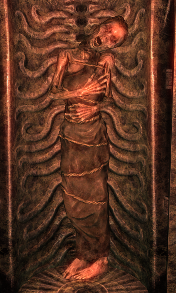 http://img3.wikia.nocookie.net/__cb20120124012449/elderscrolls/images/a/a4/NightMother_Skyrim.png