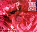 The Thorn (EP)