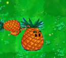 Pineapple-pult