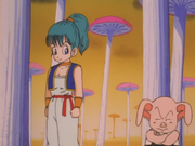 Bulma&Oolong(MushroomForest)